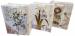 Цены на Пакет подарочный с открыткой и конвертом Пакет подарочный