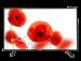 Цены на Telefunken TF - LED32S40T2 Поддерживаемые форматы файлов  -  MP3,   Поддержка цифровых стандартов  -  DVB - T,   Встроенный медиа - плеер  -  Есть,   Частота обновления  -  50,   Диагональ  -  80,   Поддержка HD  -  HD - Ready,   Поддержка 3D  -  Нет,   Контрастность  -  1200,   Угол обзора по