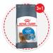 Цены на Royal Canin Сухой корм Royal Canin Light Weight Care для профилактики избыточного веса у кошек (400 г,   ) Поддержание идеального веса вашей кошки жизненно важно для ее здоровья. Тщательно разработанная и сбалансированная формула Royal Canin Light Weight Ca