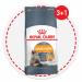 Цены на Royal Canin Сухой корм Royal Canin Hair&Skin Care для поддержания здоровья и шерсти кошек (10 кг,   ) Клетки кожи постоянно обновляются и нуждаются в питательных веществах. Повышенная чувствительность кожи часто приводит к ухудшению качества шерсти. Правиль