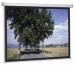 ���� �� Projecta SlimScreen 160x123 Matte White (45467) ������� 45467 ��� ������� ������������ ��������� 72 ����. ����� ������ 160 �� ������ ������ 123 �� ��� ��������� �������� - ���������� ����������� ������ Matte White ��� 6 �� ������������ ����� Projecta SlimSc