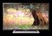 ���� �� ��������� Sony KDL - 32R503C ������������ ����������,   �� �������������� ��������� � ���������� Smart TV