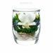 Цены на Композиция из натуральных орхидей (арт. SMO3) в подарочной упаковке Описание товара: Данная композиция состоит из натуральных орхидей,   высушенных по специальной технологии,   которая даёт возможность цветку сохранять свой свежий вид на несколько лет,   в сред