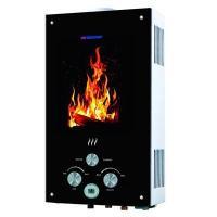 Edisson Flame F 20 GD (������)