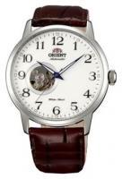 Orient DB08005W