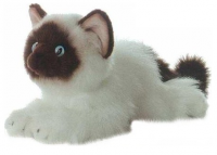 Aurora Кошка сиамская 61-822