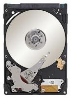 Seagate ST300MM0006
