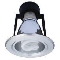 Arte Lamp A8044PL-1SS