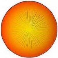 Luminarc H8819