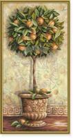 Schipper Апельсиновое дерево