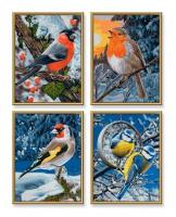 Schipper Птицы зимой