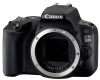 Фото Canon EOS 200D Body